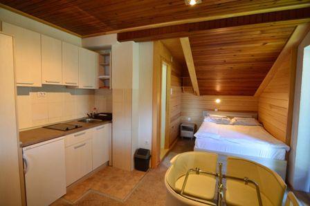 Apartman 1 | Brvnara Golija Zlatibor