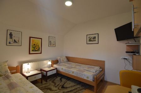 Soba 3 | Apartmani Dah Planine Zlatibor